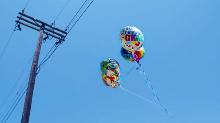 5 Reasons You Should Never Release Balloons into the Air